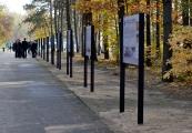 """Pokaż powiększenie powyżej: Wystawa """"Obóz zagłady w Sobiborze"""""""