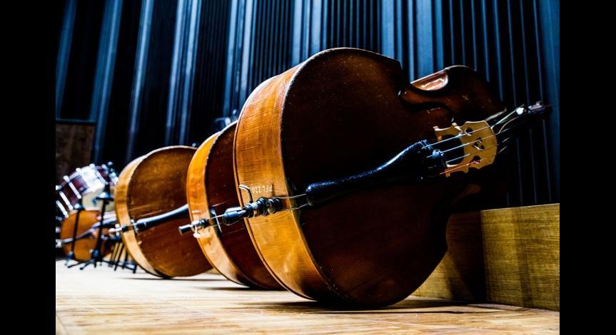 Powiększ obraz: Muzyczne obchody rocznicy