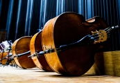 Pokaż powiększenie powyżej: Muzyczne obchody rocznicy